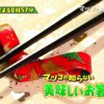 マツコの知らない世界で三井和典さんが紹介するお箸は何?どこで買える?【1/15放送】