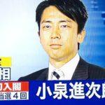 小泉進次郎が入閣内定するも実績はあるのか?人気の理由は演説と容姿にあった